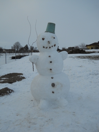 Snowman made this year ;D solution
