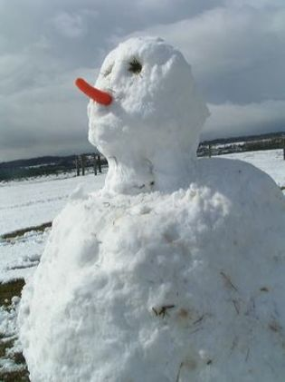snowman with big nose solution
